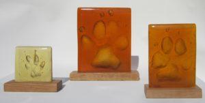pootafdrukken van Sint Bernhard, golden retriever en kat